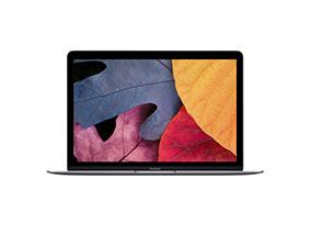 Замена матрицы на ноутбуке Apple Macbook 12 Core M3 Space Gray Mlh72
