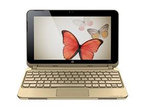 Замена матрицы на ноутбуке Hp Mini 1099Er Vivienne Tam Edition